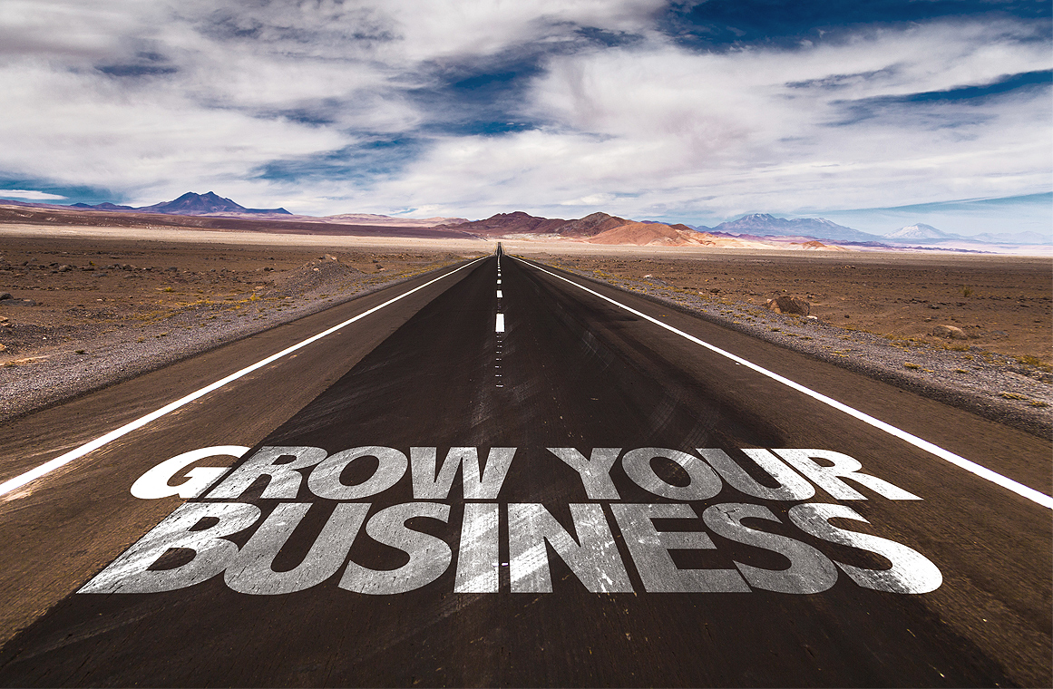 Successfully_Growing_Your_Business
